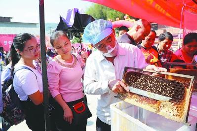 宁化第五届蜂蜜文化节暨电商扶贫助农签约仪式启动